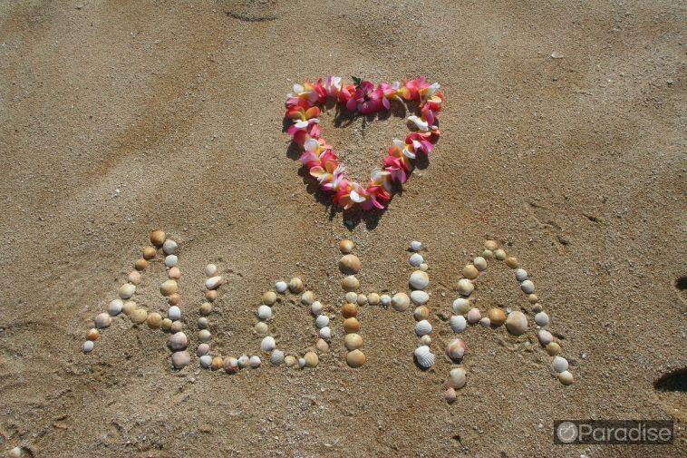 ea4388f5 hawaii events 758x505 - ホノルルの秋のイベント9月から11月編