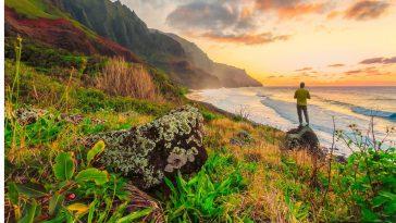 fc75b03f hawaii beach 364x205 - ホノルルの美しいビーチでハワイの思い出を作ろう