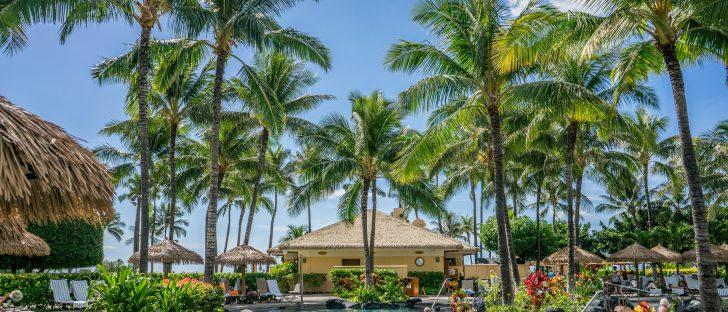 63f7fdb0 hawaii accounts 728x312 - 思わずハワイにいるような気分になれるハワイ好きなら是非フォローしたいインスタグラムアカウント10選