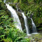 64337feb hawaii nature 150x150 - ハワイの歴史と伝統文化を体験できるおすすめツアー10選