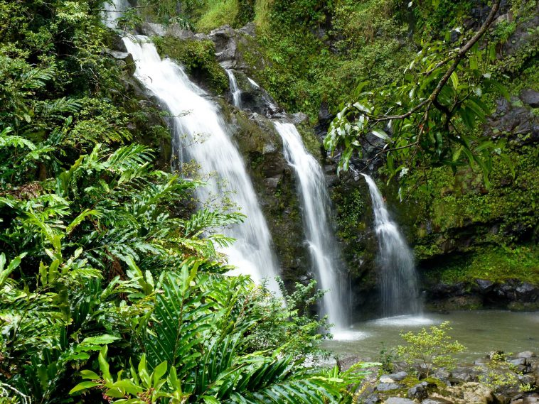 64337feb hawaii nature 758x569 - ハワイの歴史と伝統文化を体験できるおすすめツアー10選